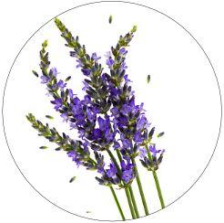 Hausmittel Lavendel in Gute Laune Kapseln beruhigend und ausgleichend