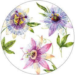 Passionsblume in Gute Laune Kapseln enthält wertvolle Flavanoide