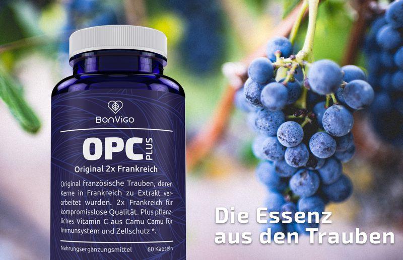 OPC pflanzliches Immunsystem Traubenkernextrakt Nahrungsergänzungsmittel