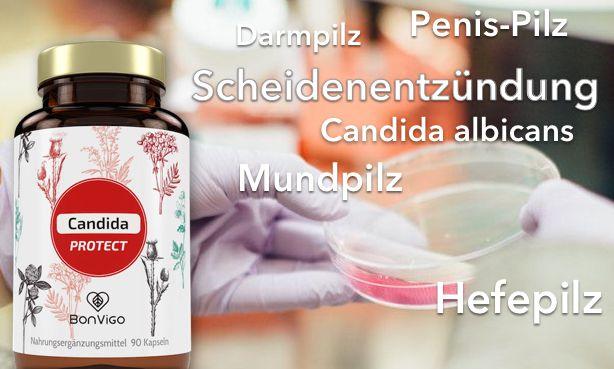 scheidenpilz-scheidenentzündung-penis-pilz-verhüten